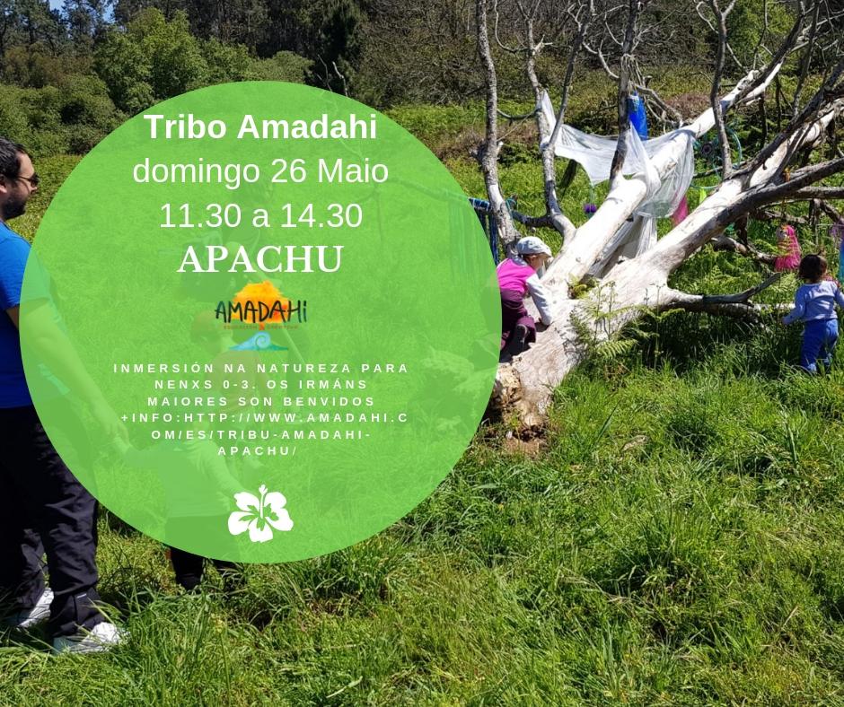 cartel tribu amadahi apachu
